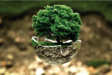 Es mejor buscar el crecimiento que solamente buscar lograr metas